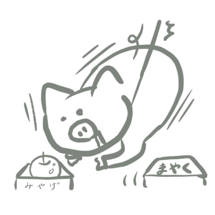麻薬探知豚として働いた豚