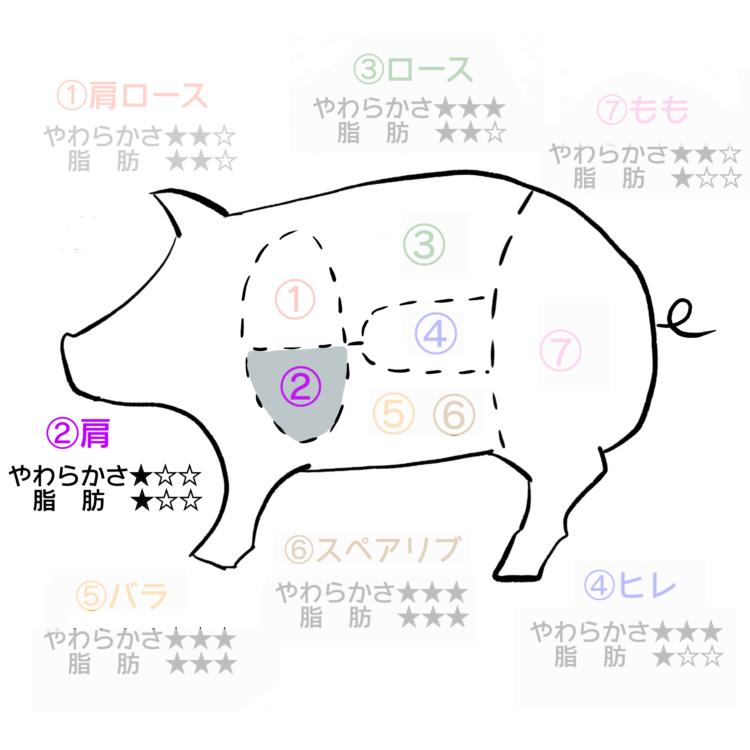 豚肉部位 肩