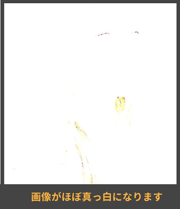 画像は真っ白に