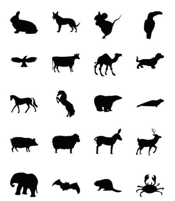 20_animal_shapes_for_photoshop_by_unidentifystudios-min
