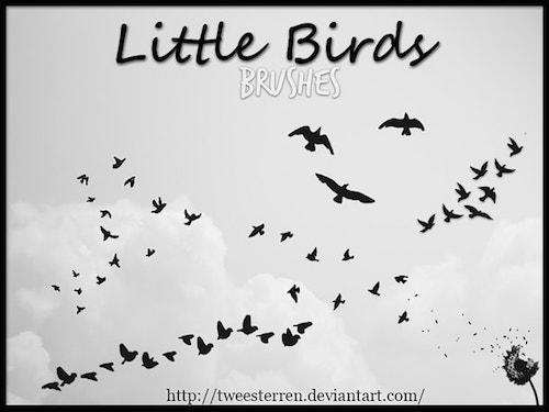 鳥の群れ ブラシ素材