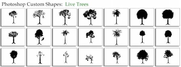 live_trees_by_thesuper-min