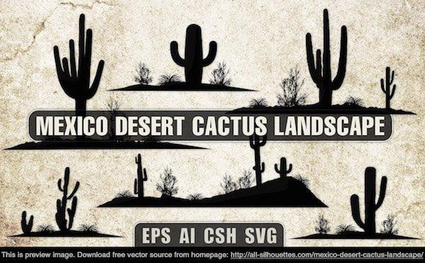 mexico_desert_cactus_landscape-min