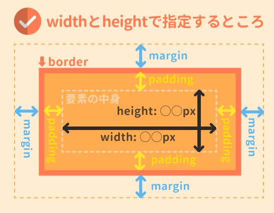 widthとheightはボックスモデルのどこに