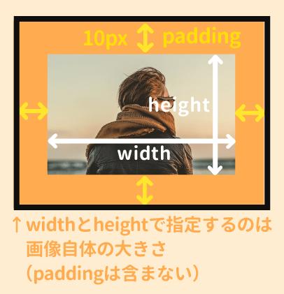 heightとwidth