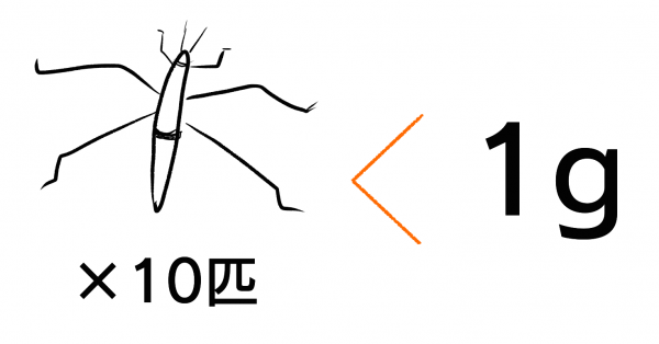 アメンボの体重は軽い