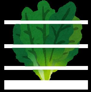 Hourensou spinach