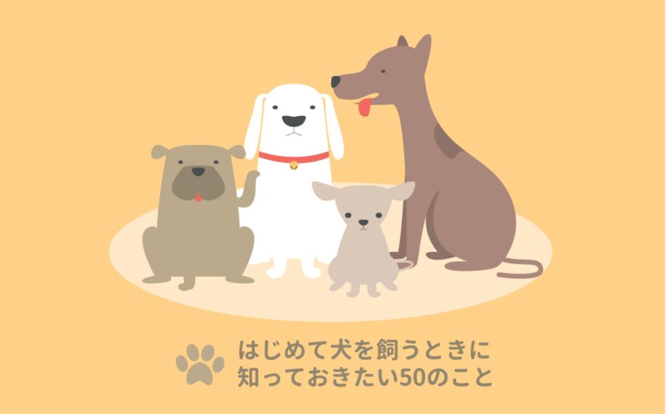 はじめての犬の飼い方